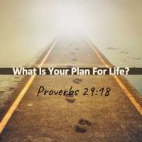 What Is Your Plan For Life?